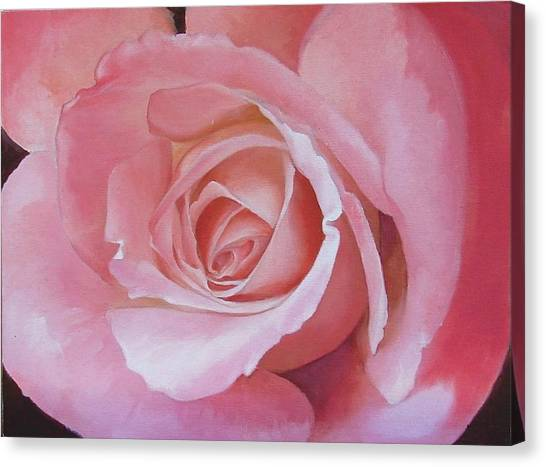 Close Up Painting Of Pink Rose Canvas Print