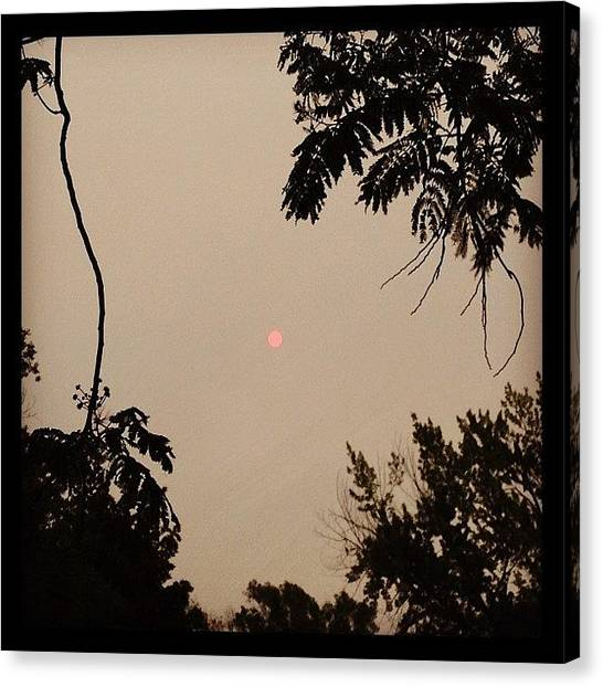 Large Birds Canvas Print - Cloudy Red Sun by Marc Crow