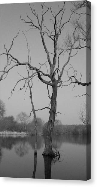 Coate Water Canvas Print