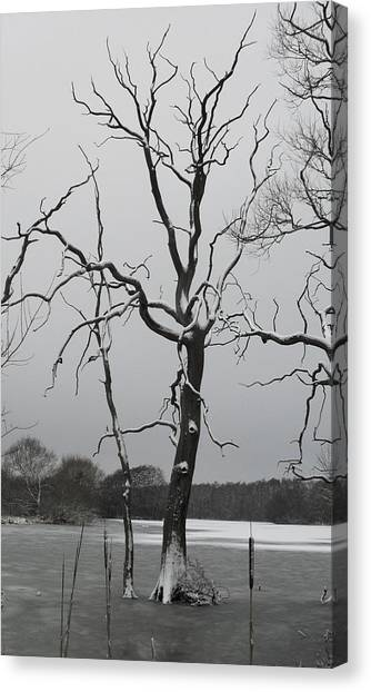 Coate2 Canvas Print