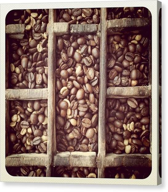 Meat Canvas Print - Coffe Beans by Isabel Poulin
