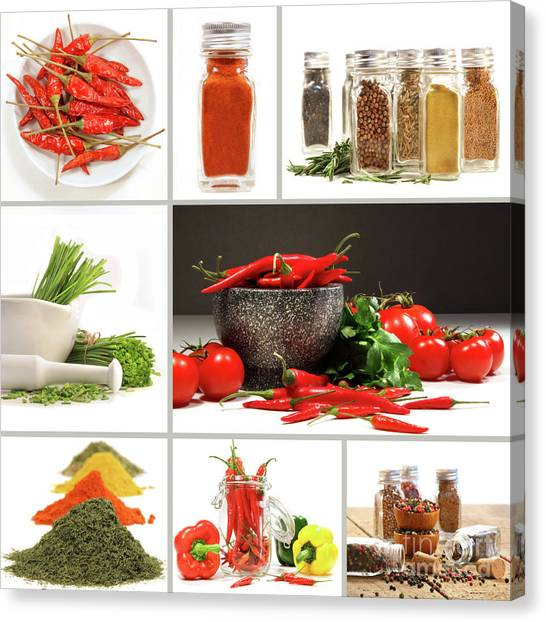 Condiments Canvas Print - Collage Of Different Colorful Spices For Seasoning by Sandra Cunningham