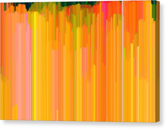 Color Tones 2  Canvas Print by Lyle Crump