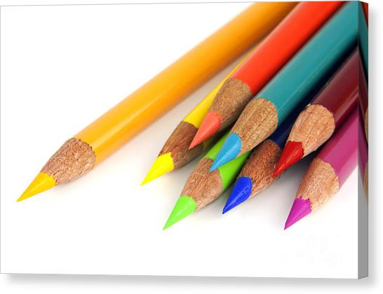 Elementary School Canvas Print - Colored Pencils by Blink Images