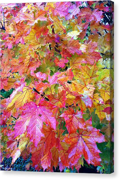 Colorful Autumn Canvas Print