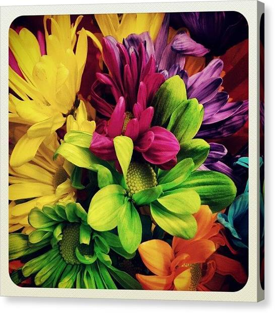 Colorful Canvas Print - #colorful #flowers by Mandy Shupp
