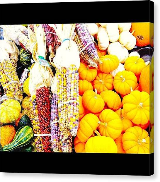 Pumpkins Canvas Print - #colorful #fruit #corn #squash #pumpkin by Supat Rattanasuksun
