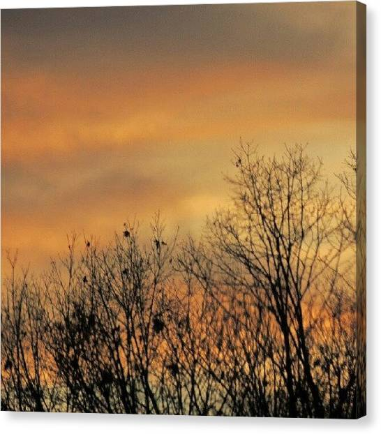 Trucks Canvas Print - Colorful Sundown by Kelli Stowe