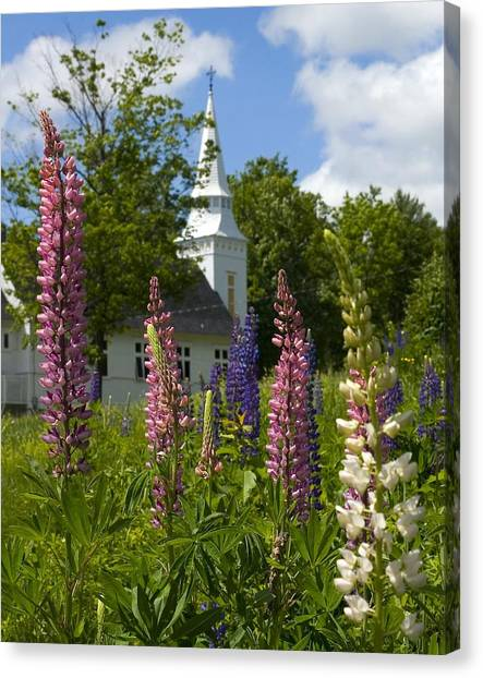 Colors Of Church Canvas Print by Jim McDonald