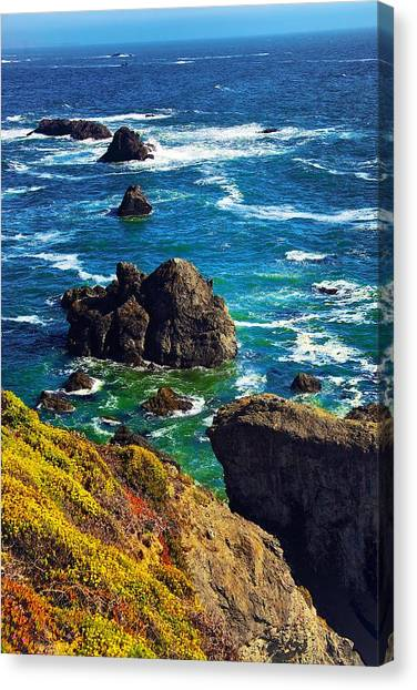 Colors Of The Pacific Canvas Print