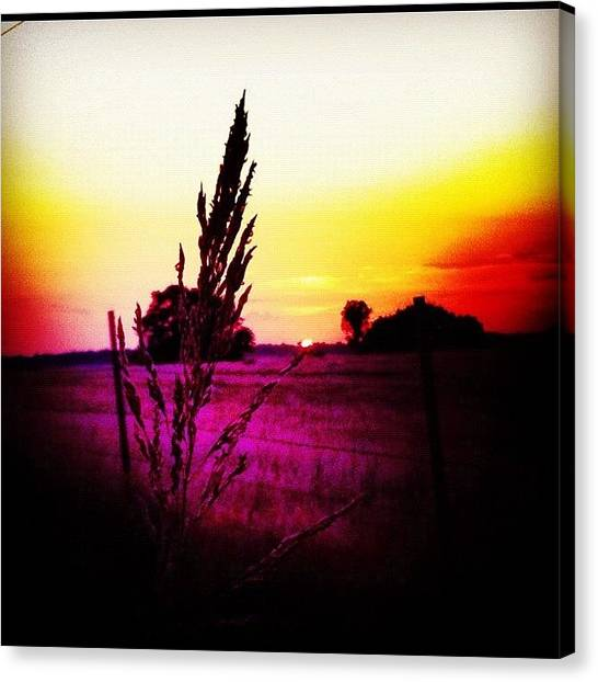 Oklahoma Canvas Print - Colors Of The Plains by David Hayden