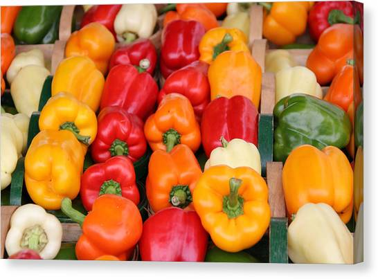 Colourful Peppers Canvas Print by Kim French