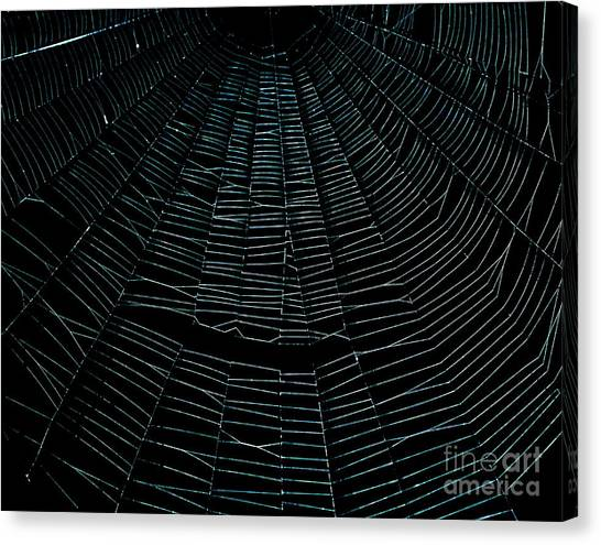 Come Into My Web Canvas Print by Monica Poole