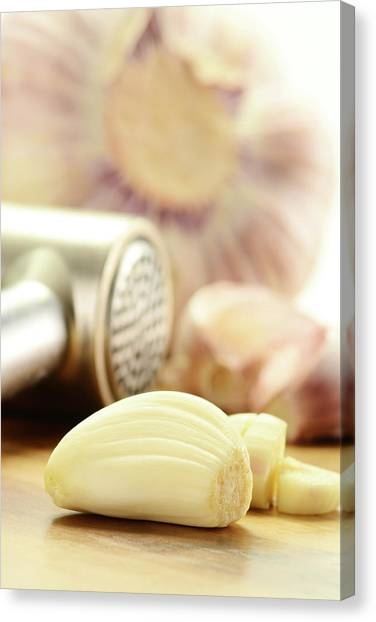 Composition With Fresh Garlic On Breadboard Canvas Print by T Monticello