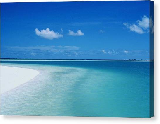 Reggie White Canvas Print - Cook Islands by Reggie David - Printscapes