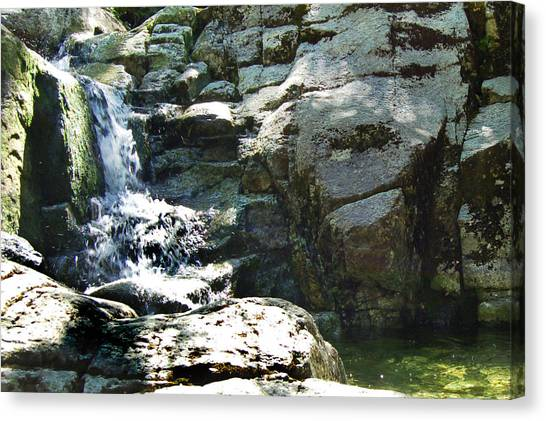 Cool Summer Water Canvas Print