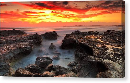 Coolongatta Gold Canvas Print