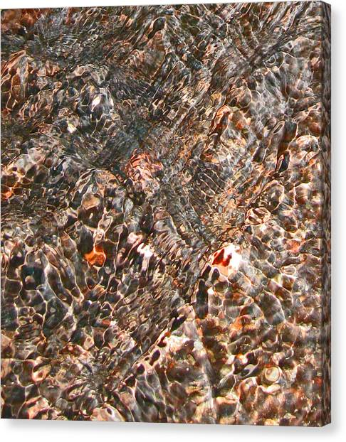 Copper Brook Abstract Canvas Print by Seth Shotwell