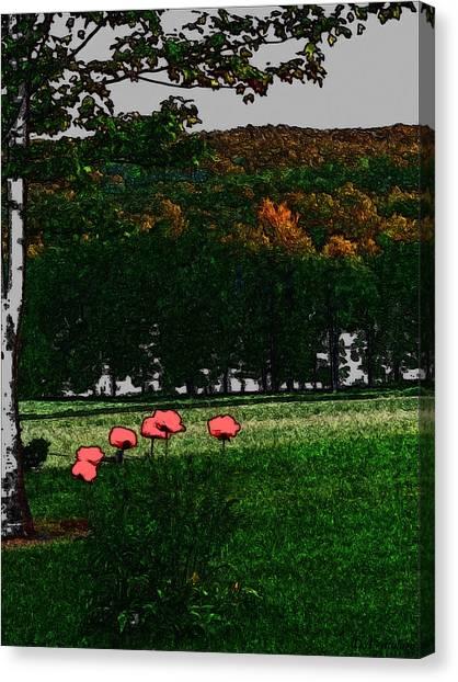 Corner Of My Eye Canvas Print by Debra     Vatalaro