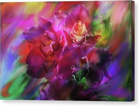 Coronation Orchids  Canvas Print