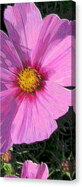 Cosmos Portrait Canvas Print