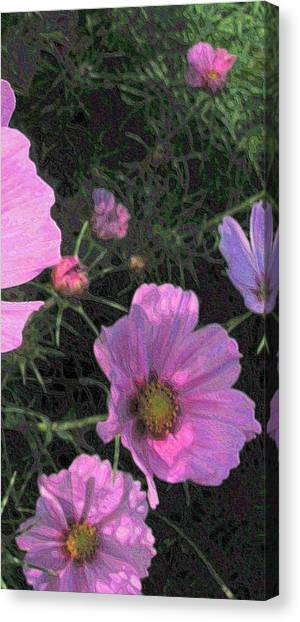 Cosmos Triptych Three Canvas Print