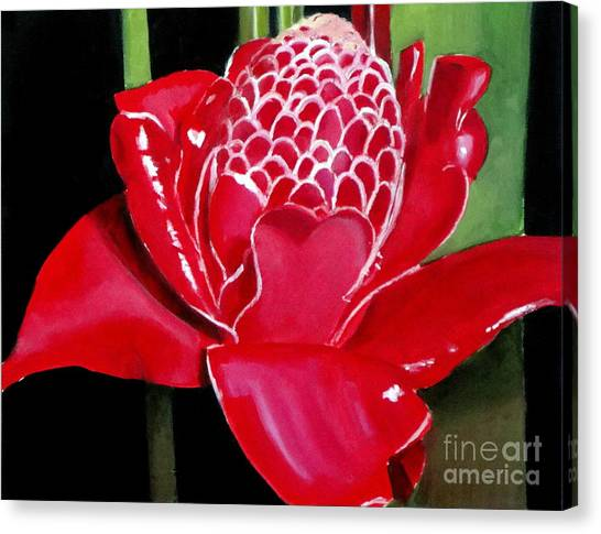 Costa Rican Beauty Canvas Print