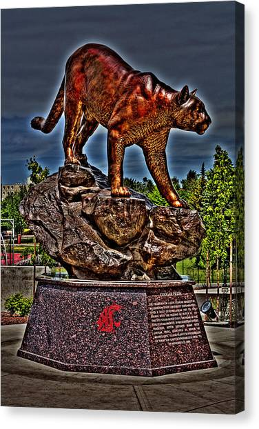 Washington State University Canvas Print - Cougar Pride by David Patterson