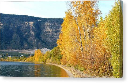Oyama Canvas Print - Country Color 6 by Will Borden