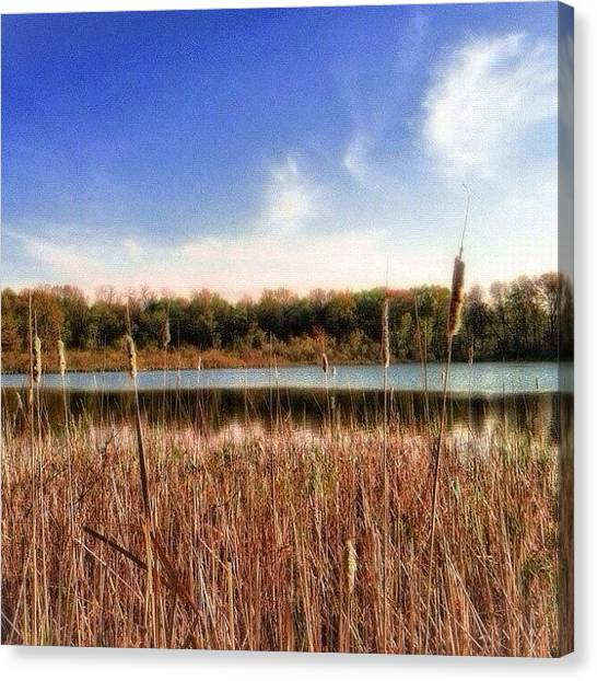Ponds Canvas Print - Country Lake by Maury Page