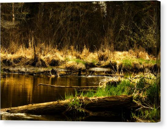 Country River Canvas Print by Gary Smith