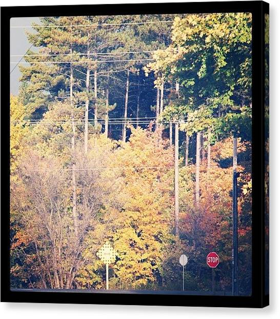 Thanksgiving Canvas Print - Country Road by Jen Caruso
