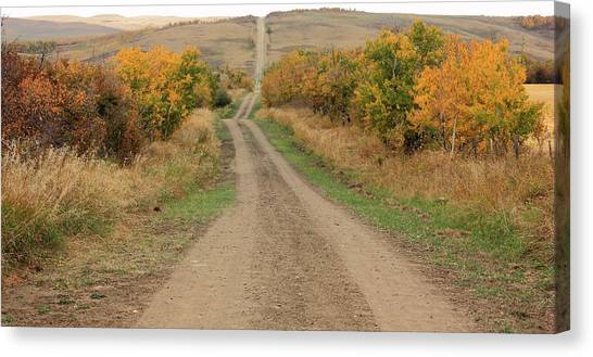 Brown Ranch Trail Canvas Print - Country Road To Nowhere by Jim Sauchyn