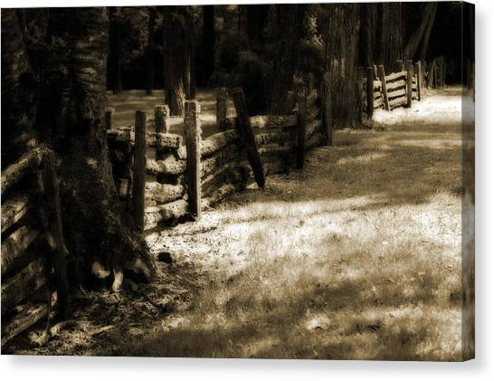 Country Romance Canvas Print by Terrie Taylor