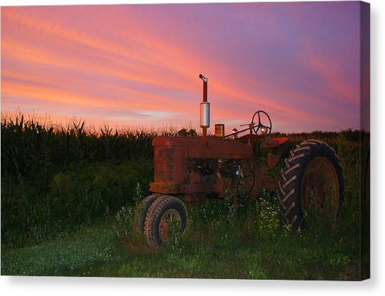 Country Sunset Canvas Print by Corrie McDermott