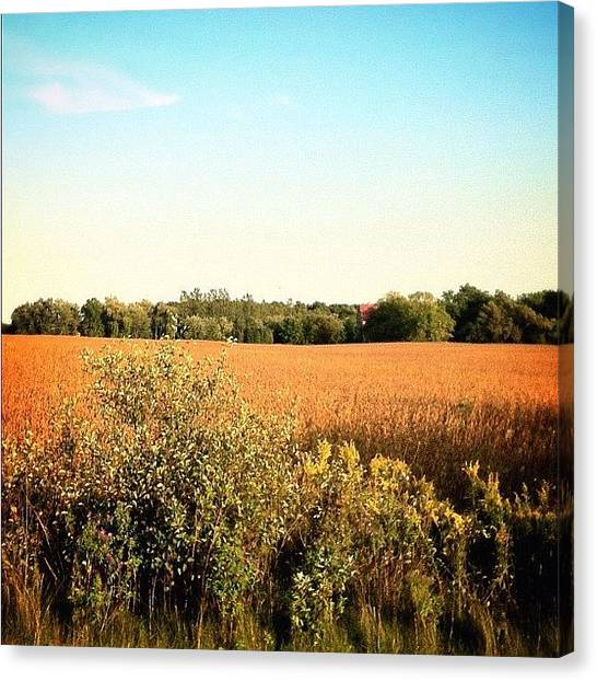 Farmers Canvas Print - #countryside #countrylife #walking by Marc Plouffe
