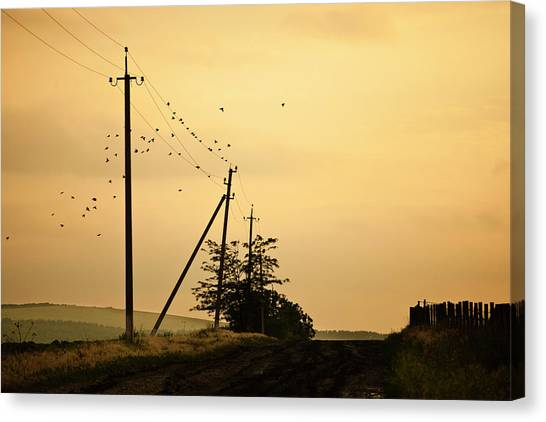 Countryside Road With Birds On Sky Canvas Print by Made By  Vitaliebrega.com