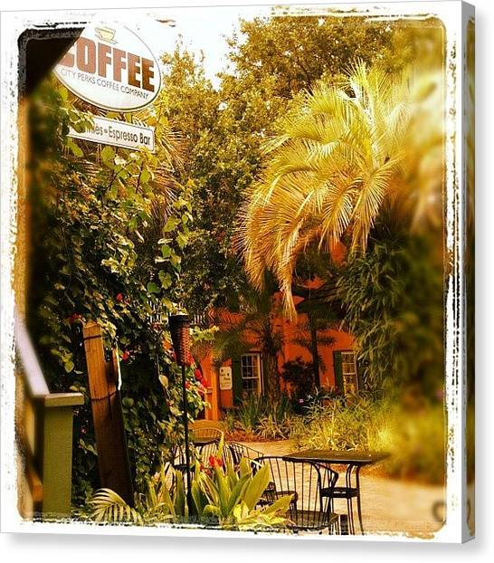 Palm Trees Canvas Print - Courtyard Cafe by Michele Green Williams