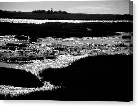 Covering The Marshes Canvas Print by Jez C Self