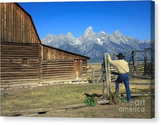 Cowboy With Grand Tetons Vista Canvas Print