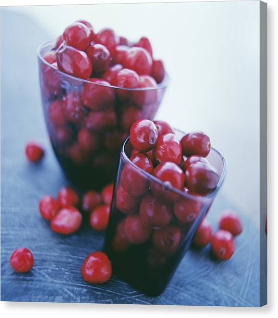 Cranberries Canvas Print by David Munns