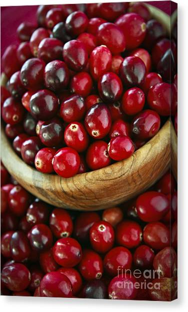 Cranberry Sauce Canvas Print - Cranberries In A Bowl by Elena Elisseeva