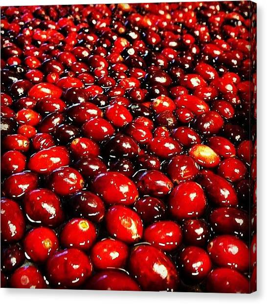 South Carolina Canvas Print - #cranberries by Laura OConnell
