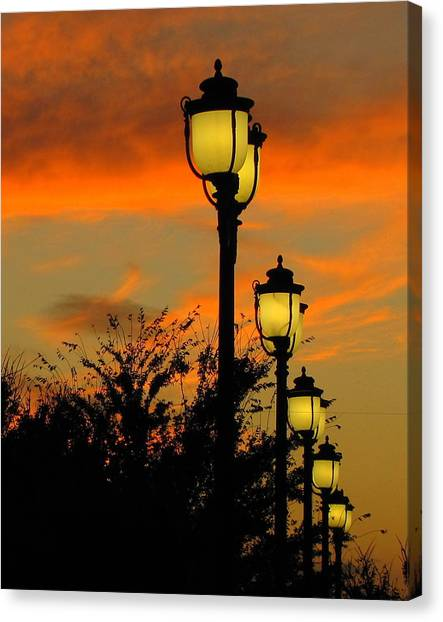 Cranes Roost Lights Canvas Print