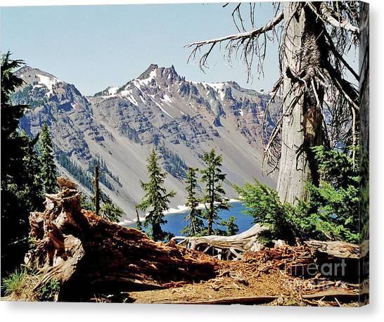 Crater Lake Through Nature Canvas Print by Mike Stone