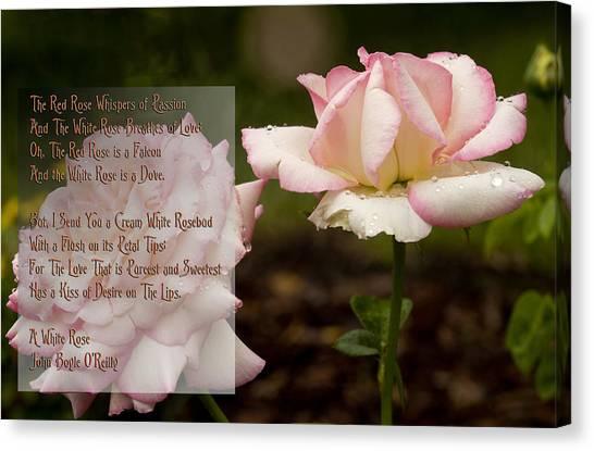 Flower Poem Canvas Prints Page 4 Of 15 Fine Art America