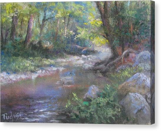 Creek Study Canvas Print