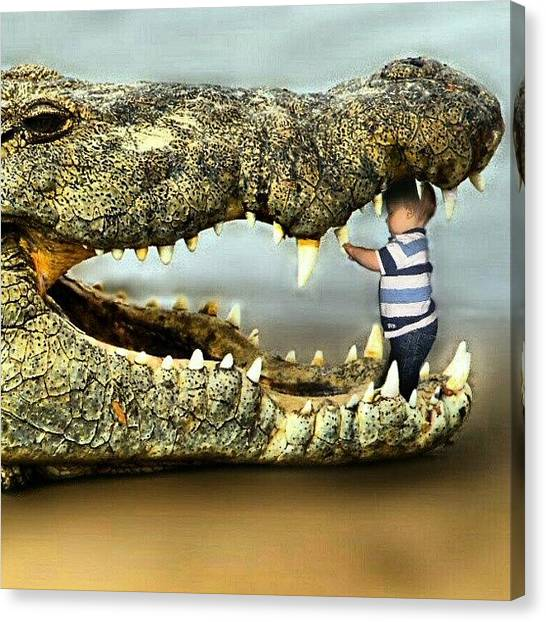 Teeth Canvas Print - #crocodile #alligator #teeth #baby by Kevin Zoller