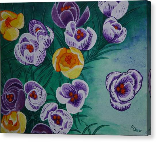 Crocus Canvas Print