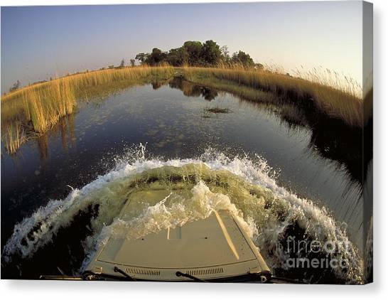 Okavango Swamp Canvas Print - Crossing River In Land Cruiser by Greg Dimijian